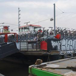 dam18
