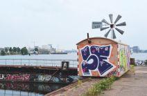 harbor19